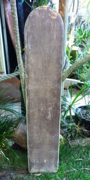 1 20 1 Redwood Paipo 500 wm
